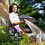 rainwater harvesting, save water by rain water harvesting