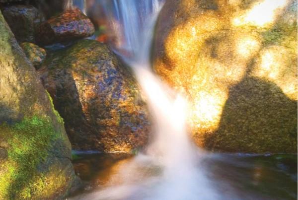 medium rock water garden designs